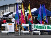 The Proctor Farmer's Market