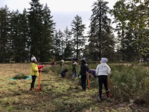 Habitat restoration work party (fourth Saturday of the month) Lakewood